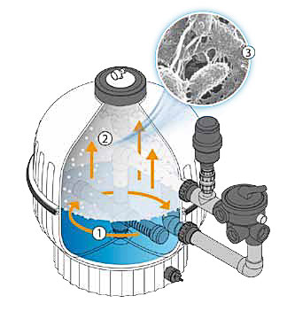 https://www.piscines-hydrosud.fr/medias_produits/imgs/fonctionnement-du-filtre-biologique.jpg